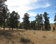 10562 Shadow Pines Road, Parker image
