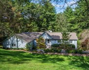 301  Ethan Pond Way, Hendersonville image
