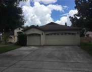 11807 Tall Elm Court, Riverview image