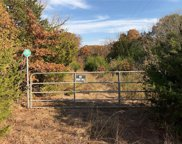 10520 S Dobbs Road, Luther image