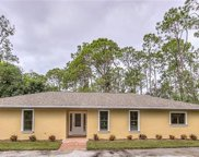 25230 Busy Bee Dr, Bonita Springs image