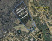 80.71 Acres Off Hwy 90, Conway image