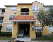 18001 Richmond Place Dr Unit 817, Tampa image