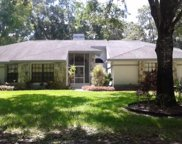 2570 Hunt Road, Tarpon Springs image