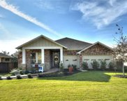 173 Cypress Forest Dr, Kyle image