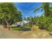 43212 NE 46TH  AVE, Woodland image