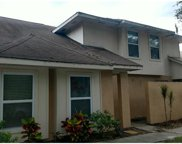 3206 Thorn Court, Tampa image