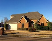 8746 Forest Breeze, Memphis image