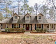 1115 Riverchase Pkwy, Hoover image