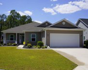 1704 Turkey Ct., Conway image