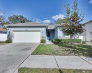 10922 Pond Pine Drive, Riverview image