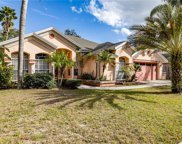 10422 Nightengale Drive, Riverview image