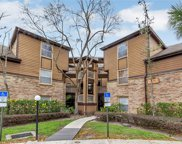 474 S Pin Oak Place Unit 202, Longwood image