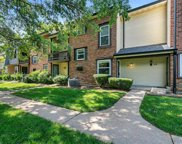 96 Conway Cove  Drive, Chesterfield image