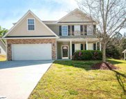 14 Greenbranch Way, Simpsonville image