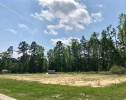 TBD 2.67 Ac Brown Swamp Rd, Conway image