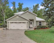 1440 FRUIT COVE RD S, St Johns image