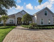 10225 VINEYARD LAKE RD E, Jacksonville image