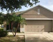 8560 Deer Chase Drive, Riverview image