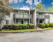 701 Woodland Village Unit 701, Homewood image