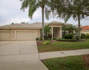 9128 Highland Ridge Way, Tampa image