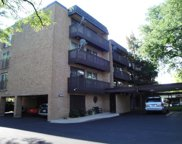 1927 Tanglewood Drive Unit 3A, Glenview image