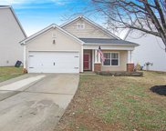 13841  Purple Bloom Lane, Charlotte image