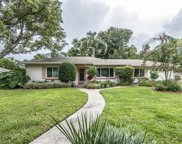 2466 Palmetto Road, Mount Dora image