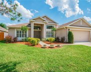 8215 Canyon Creek Way, Tampa image