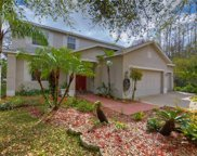 16201 Leta Trace Court, Tampa image