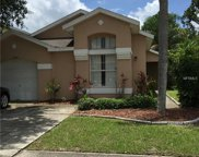 13202 Meadowfield Drive, Orlando image