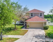 12826 Hampton Hill Drive, Riverview image