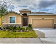 11519 Storywood Drive, Riverview image