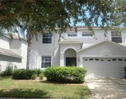 10604 Liberty Bell Drive, Tampa image