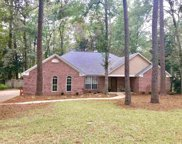 9341 Buck Haven, Tallahassee image