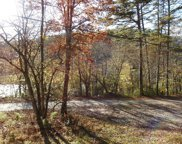 Toccoa River Road N, Mineral Bluff image