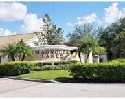 13251 Little Gem CIR, Fort Myers image