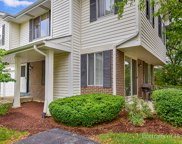 559 Willowcreek Court, Clarendon Hills image