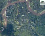 NHN Salcha River, Salcha image