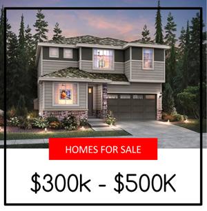 Lake Stevens Homes For Sale $300,000 - $500,000