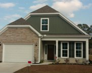 169 Heron Lake Ct, Murrells Inlet image