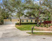 400 Buttonwood Court, Longwood image