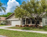 12203 Steppingstone Boulevard, Tampa image