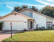 13917 Hayward Place, Tampa image