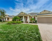3631 Arbor Chase Drive, Palm Harbor image