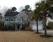 3125 Grass Marsh Drive, Mount Pleasant image
