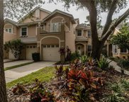 402 Fan Palm Court Ne, St Petersburg image