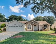 4822 Summerbridge Circle, Leesburg image