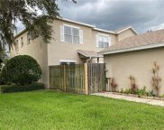18502 Pebble Lake Court, Tampa image