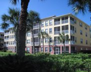 300 Canopy Walk Lane Unit 345, Palm Coast image